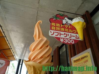 御津道の駅トマトアイス