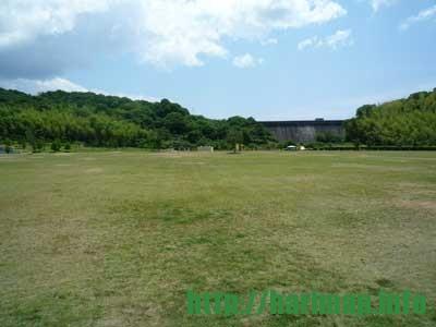 桜山公園(ダム下大芝生広場)【姫路市太市中】